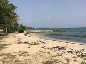 Plage de Anse Vinaigri