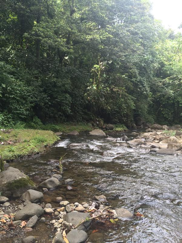 route de la traversée guadeloupe rivière Corossol