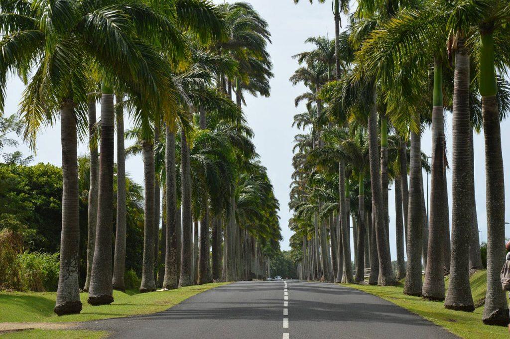 route de guadeloupe en voiture de location