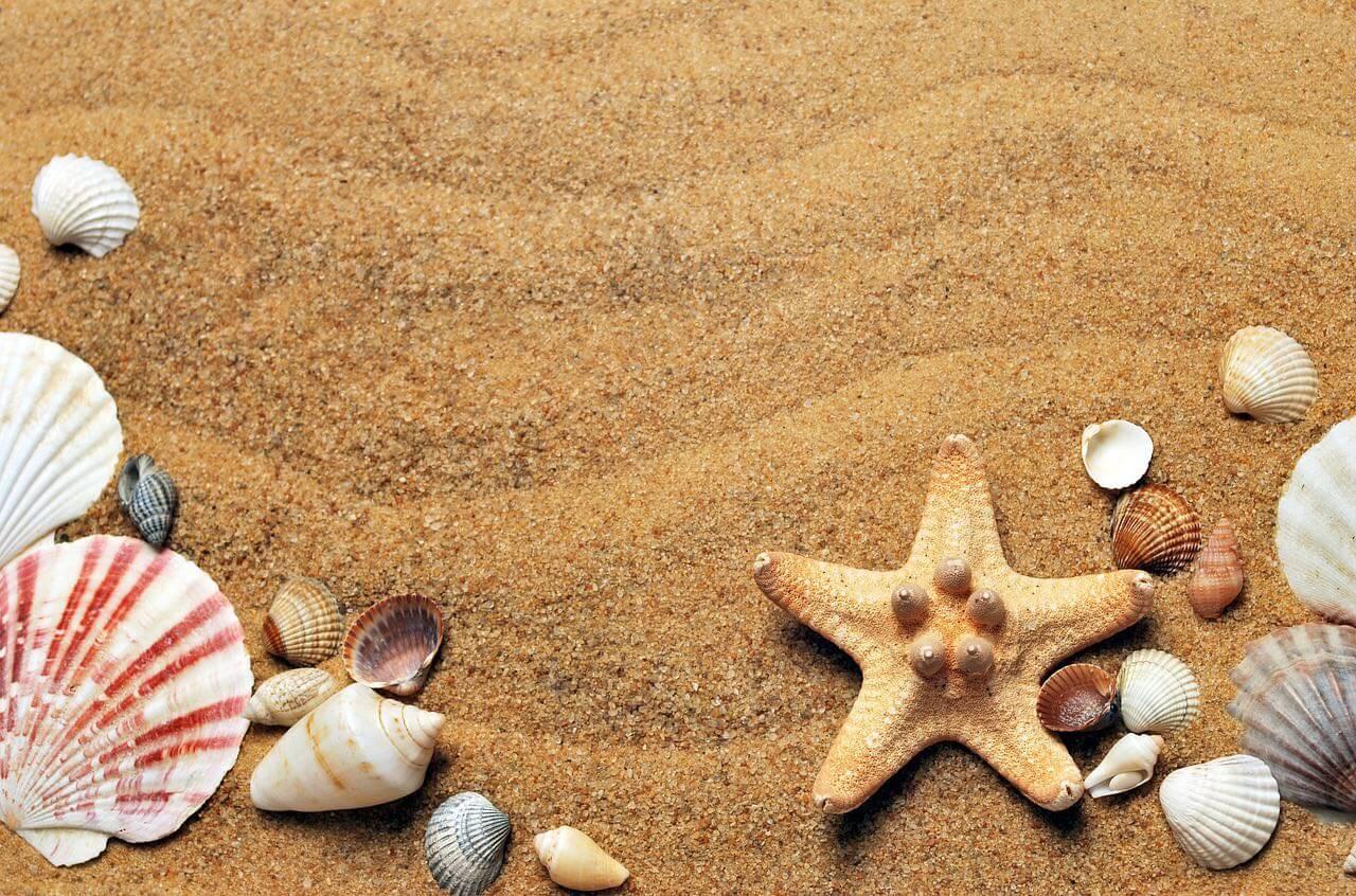 Séjour bien-être en Guadeloupe : sources chaudes en bord de mer